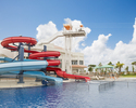 Pool & Lunch Package  Adult (13 years and up)