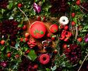 ストロベリースイーツブッフェ「Grove of berry」(一部 12:00~15:00)