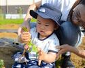Bコース:収穫体験で有機野菜を楽しむ!シンプルコース