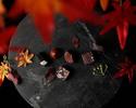 秋の収穫祭 ~Autumn Harvest~【第5弾:結庵】