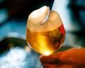 【イタリアン前菜5品+自慢のパスタのライトコース!】2時間直輸入クラフトビール5種飲放題とスパークリングワイン、カクテル全60種