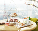 【Sakura Terrace】Sakura Afternoon Tea in a Rooftop Igloo (4 people only)