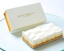 ダブルチーズケーキ【オレンジ】ハーフサイズ(冷凍商品)
