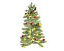 【クリスマスディナー】Menu de Noël 2020