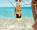 【ハッピーアワー】17:00~19:00生ビールもモヒートも390円♪アルコール約26種類用意!日~木限定です。