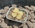 砂肝とジャガイモ ¥700