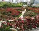 【Red Rose Garden入場券付き 】 平日限定THE SKY プレミアム ランチ